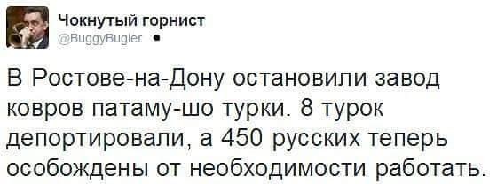 1096019_original