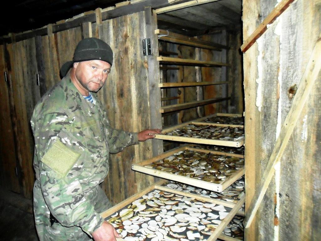 Сушилка для грибов на дровах