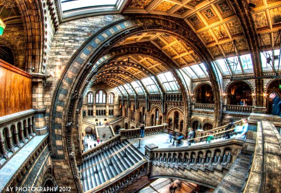 Музей естественной истории, Лондон, Англия.