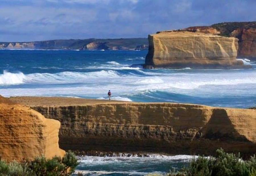 Фото Andrew Ferrier австралия