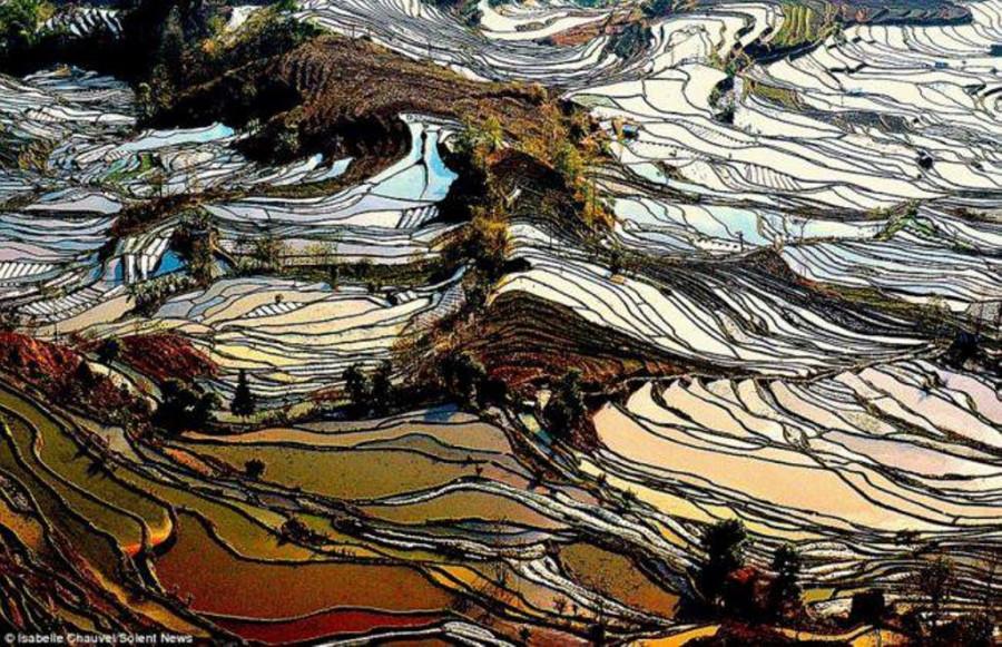 Это сказочные рисовые поля в китайской провинции Юньнань.