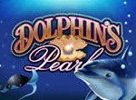Dolphinss-Pearl