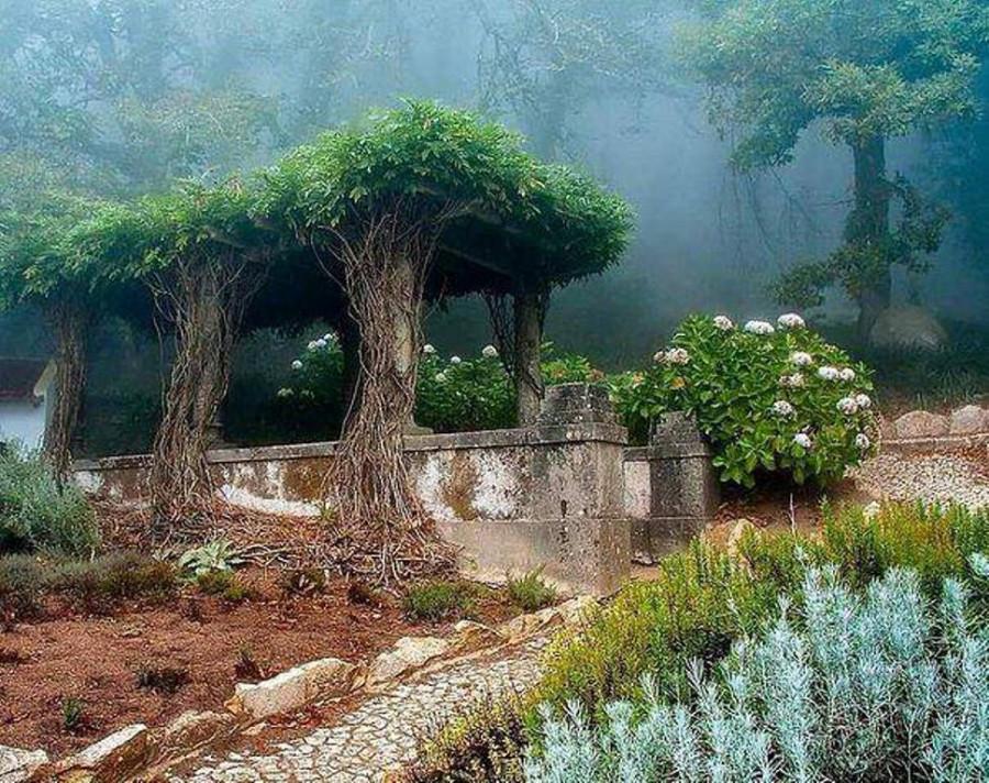 Старый сад в Синтре