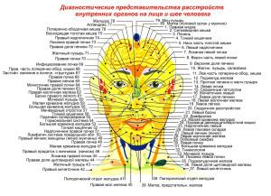 Болезни внутренних органов на лице