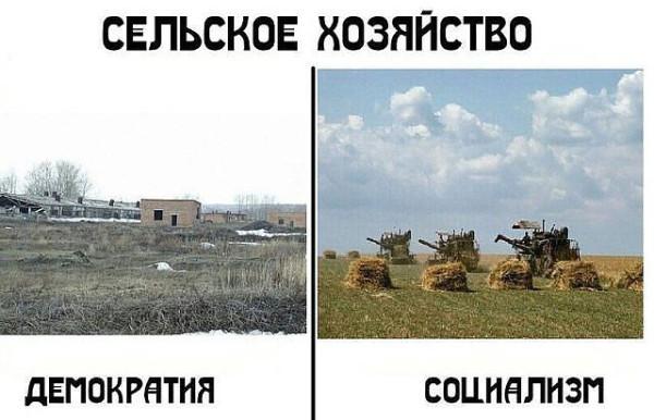 сельское хозяйство рф и ссср