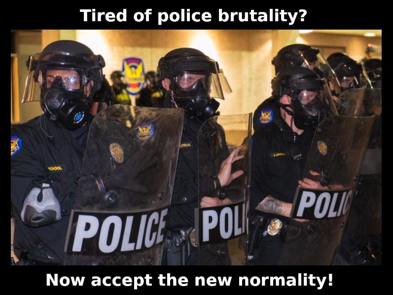 Устали от жестокостей полиции? Примите теперь новую нормальность! Где полицейская жестокость - новая норма, а протестовать запрещено вообще!