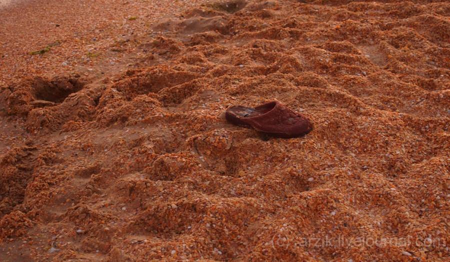 Песок и ракушки на пляже в Витязево