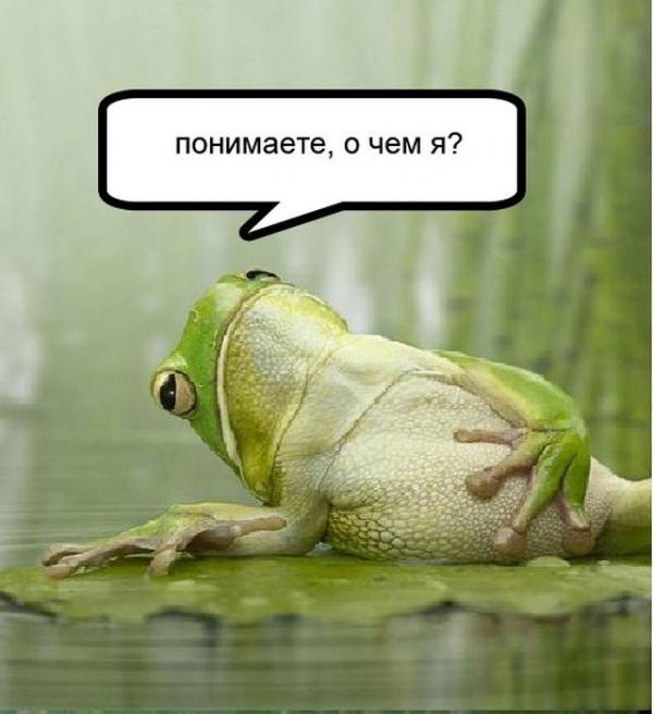 Картинки лягушек с надписями
