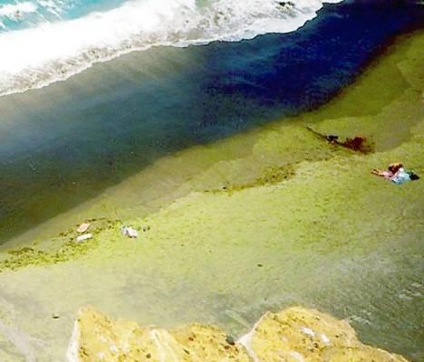 самые необычные пляжи