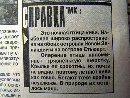 птица киви юмор газета