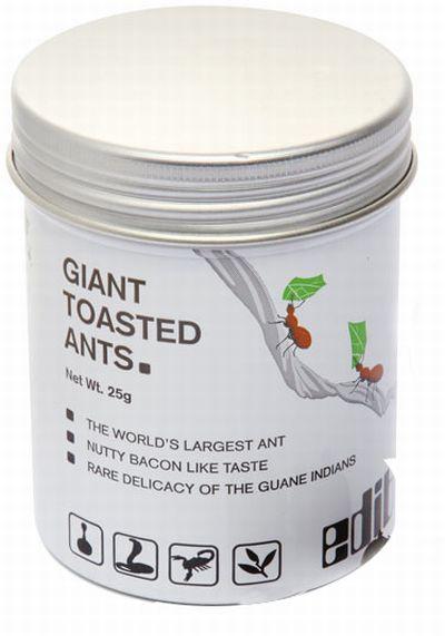 гиганстские муравьи закуска