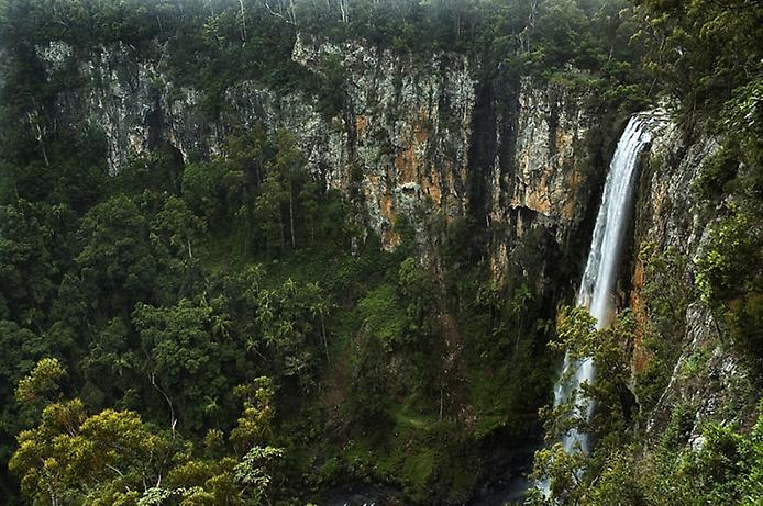 Национальный парк Спрингбрук. Австралия
