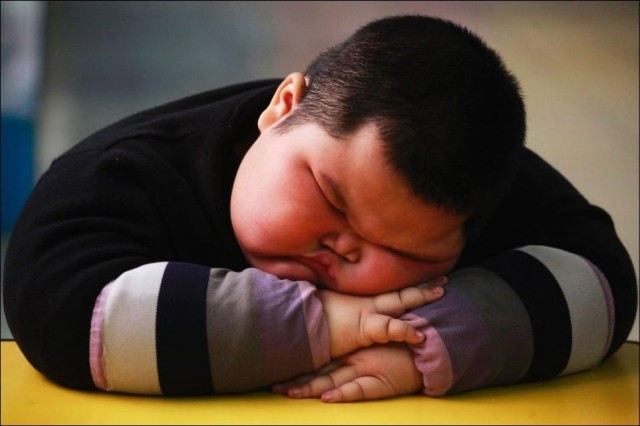Толстый малыш Лу Хао