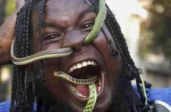 пожиратели змей