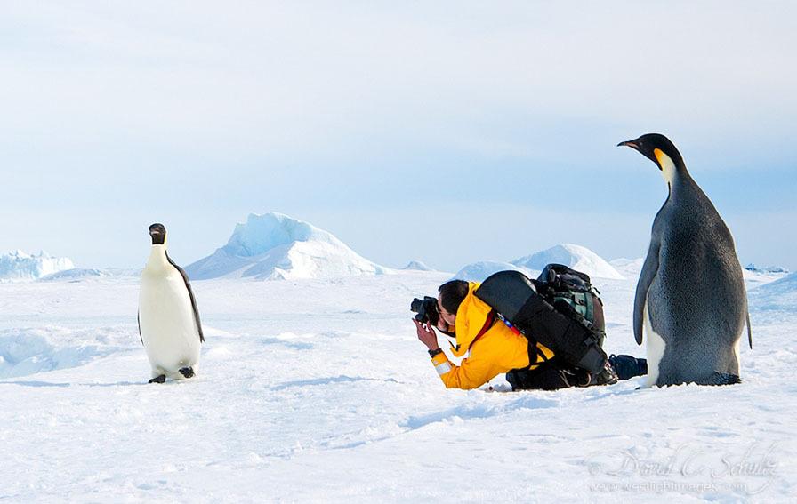 arktika-antarktika-9