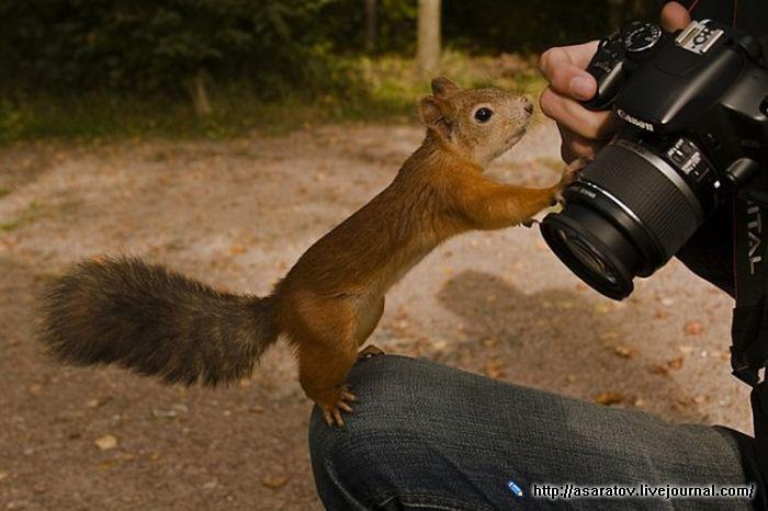 мастера фотографии