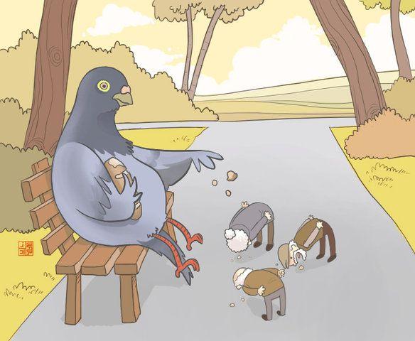 о чём мечтают голуби