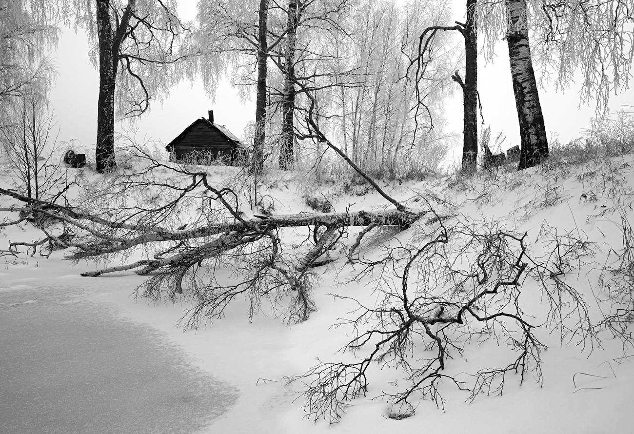 черная зима картинки быстро