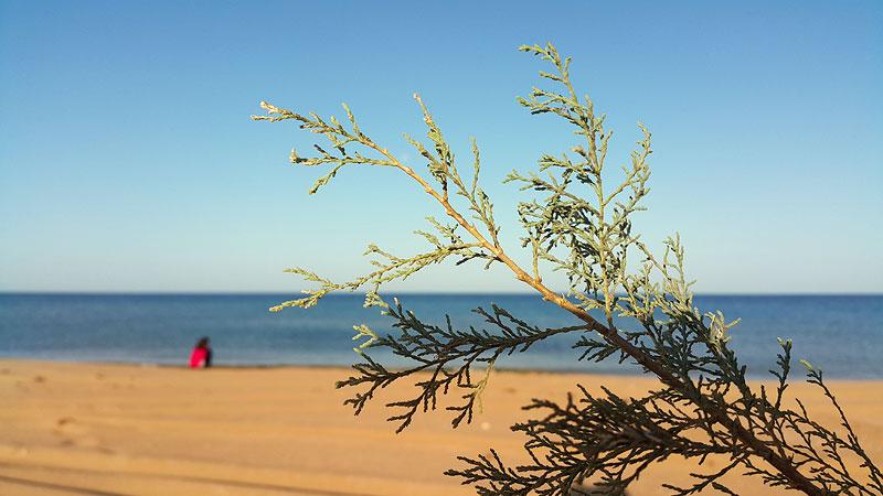 фото женщины на диком пляже