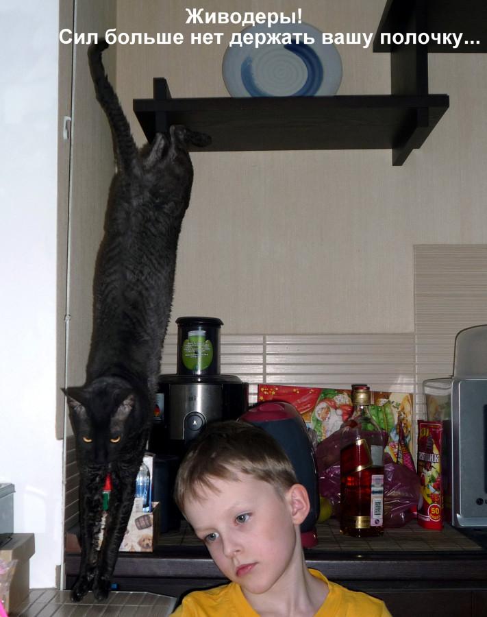 Кот-подставка_001