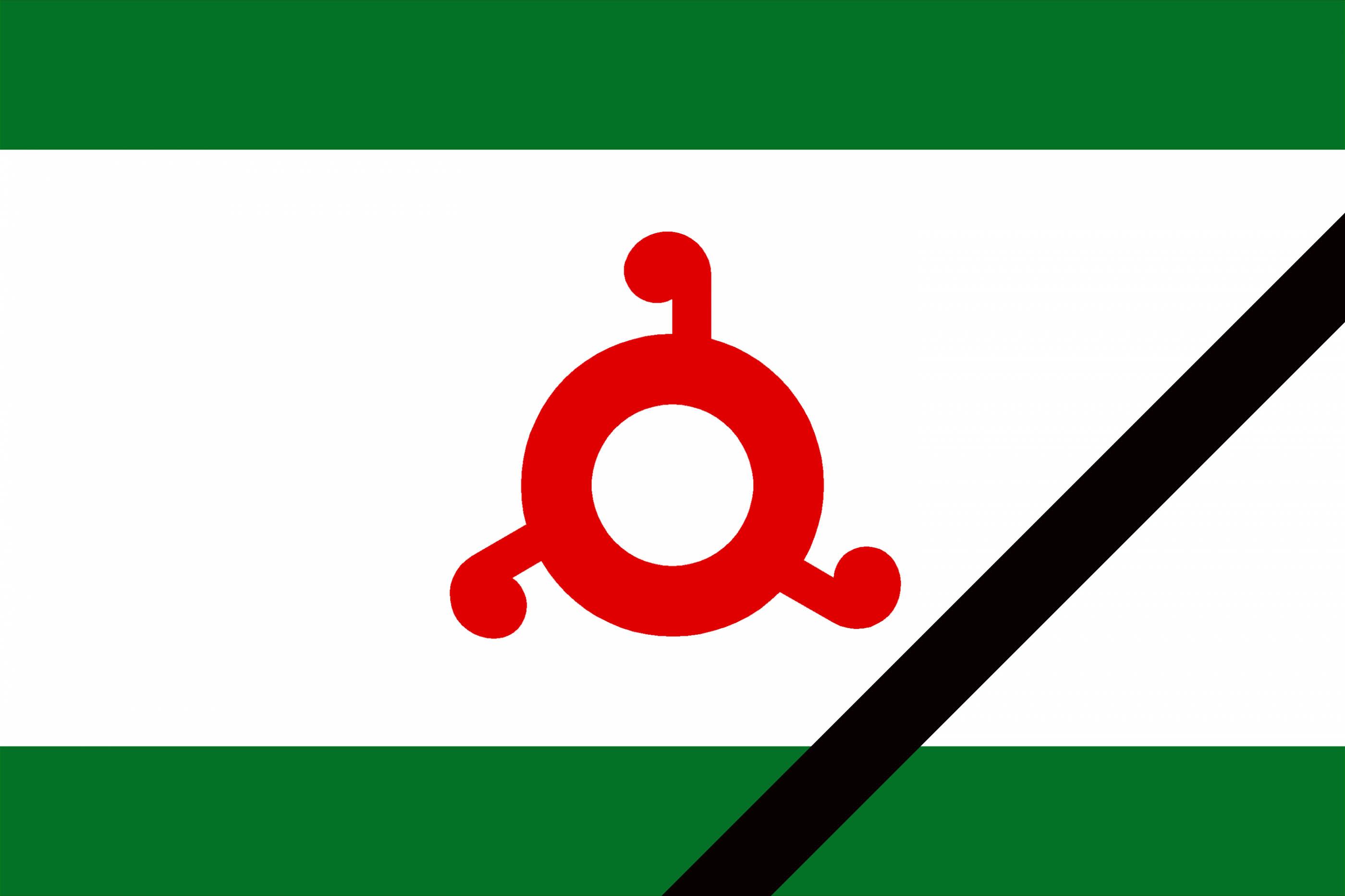flag_i