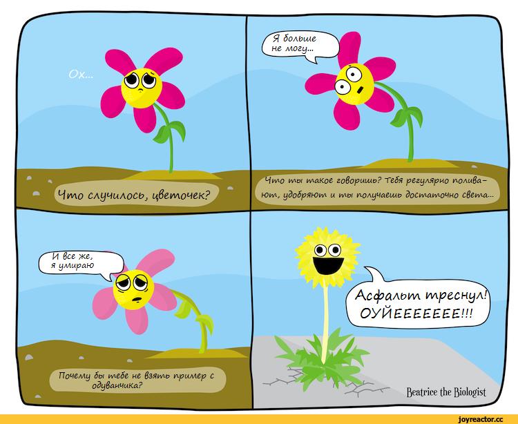 одуванчик-Комиксы-цветы-1410034