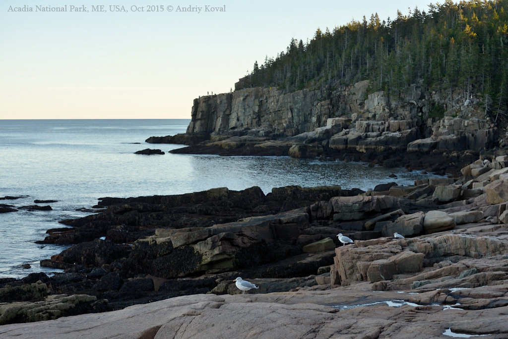 Acadia Google Earth Map 02_001.JPG