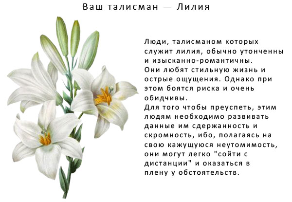 Поздравления с днём рождения лилия короткие
