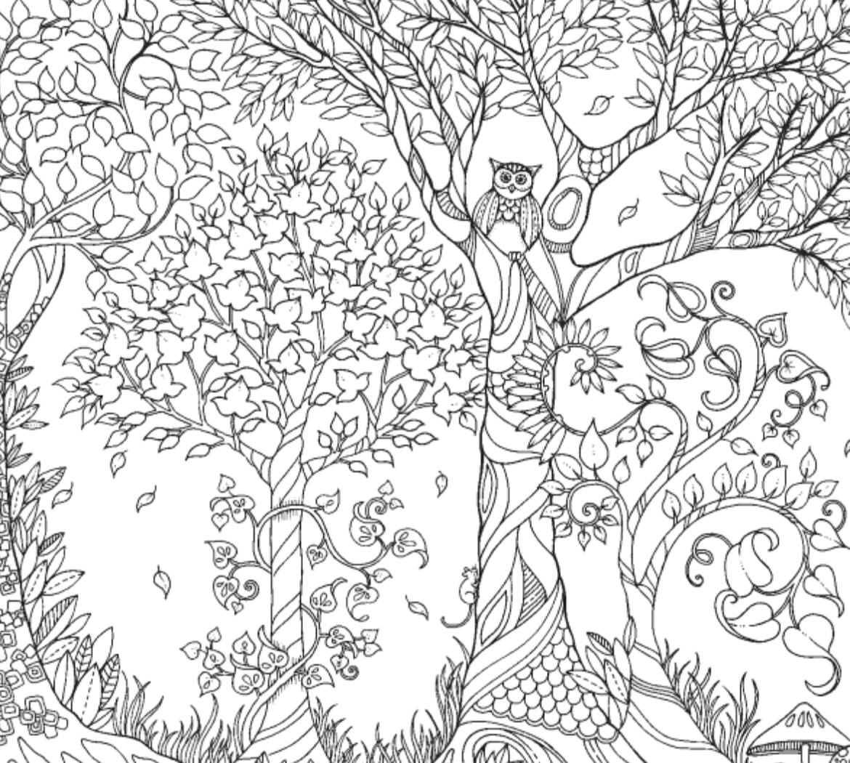Раскраска для взрослых лес