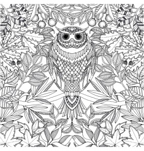 coloriage-adulte-hibou