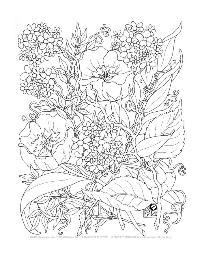 Раскраски сложные по цветам