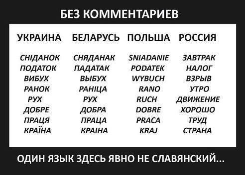 славянские языки2