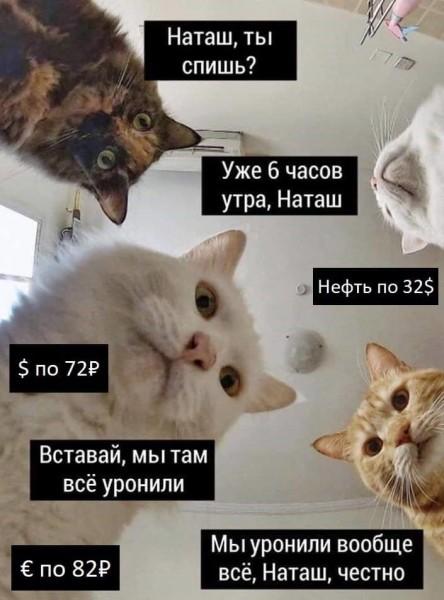 наташ ты спишь