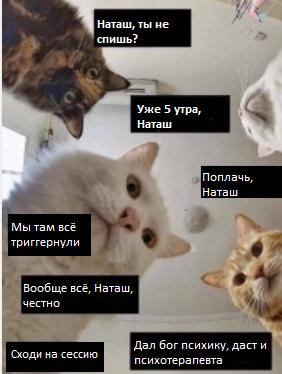Мем с котами психика