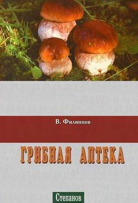 грибы111
