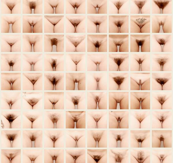 Формы женских влагалищ фото 31 фотография