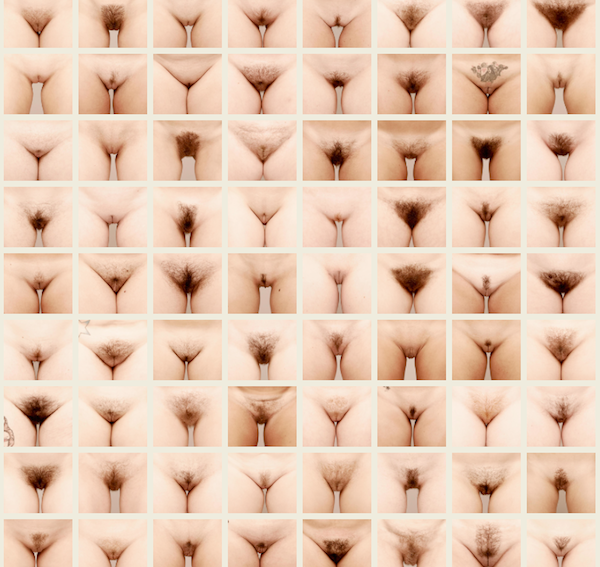 Фото форм женских влогалищ 30 фотография