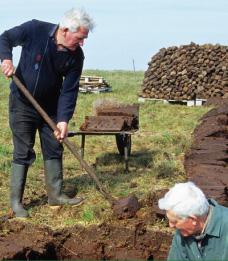 saving turf