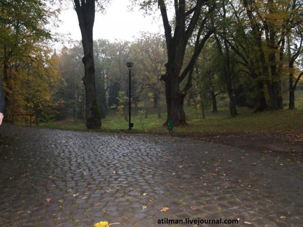 Шенборнский замок.Чинадиево.Закарпатье. PA252808