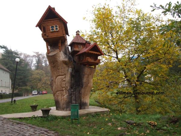 Шенборнский замок.Чинадиево.Закарпатье. PA252820(1)