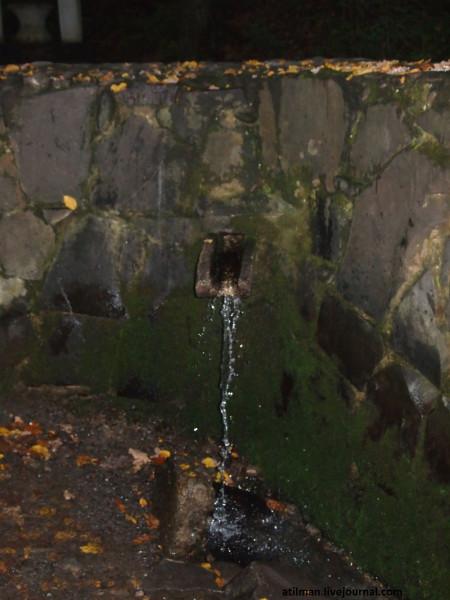 Шенборнский замок.Чинадиево.Закарпатье. PA252904