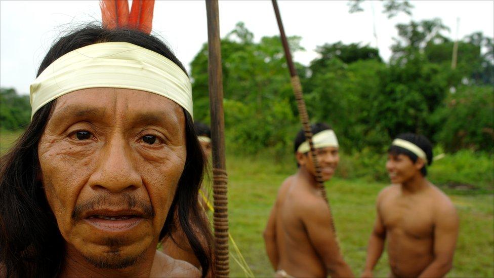 the huaorani society of ecuador