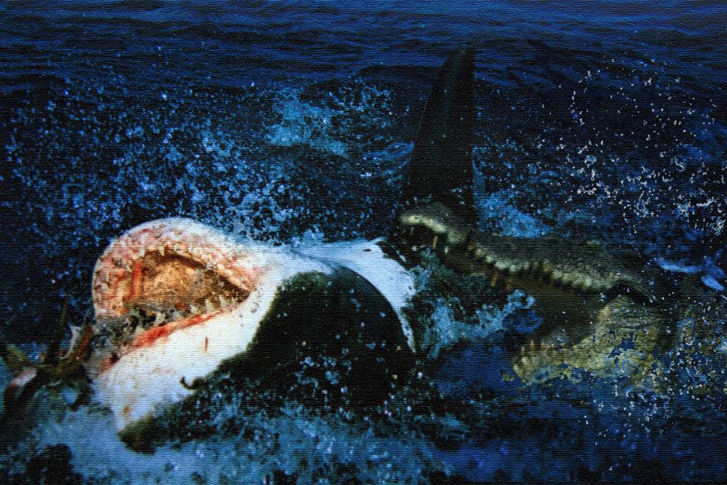 saltwater_crocodile_vs_great_white_shark_by_kaasatha-d9dcpzo