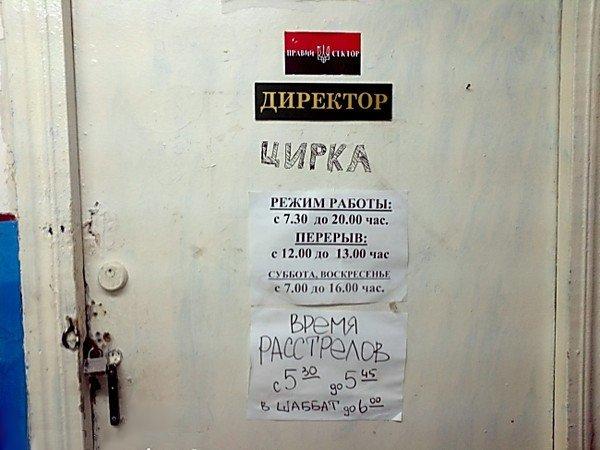 DirektorCirka