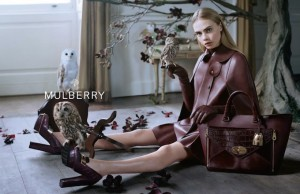 6_mulberry fall 2013_6