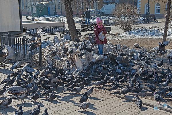 20-ОМД-Иркутск.jpg