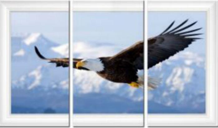 Модульная картина - Полёт орла.jpg