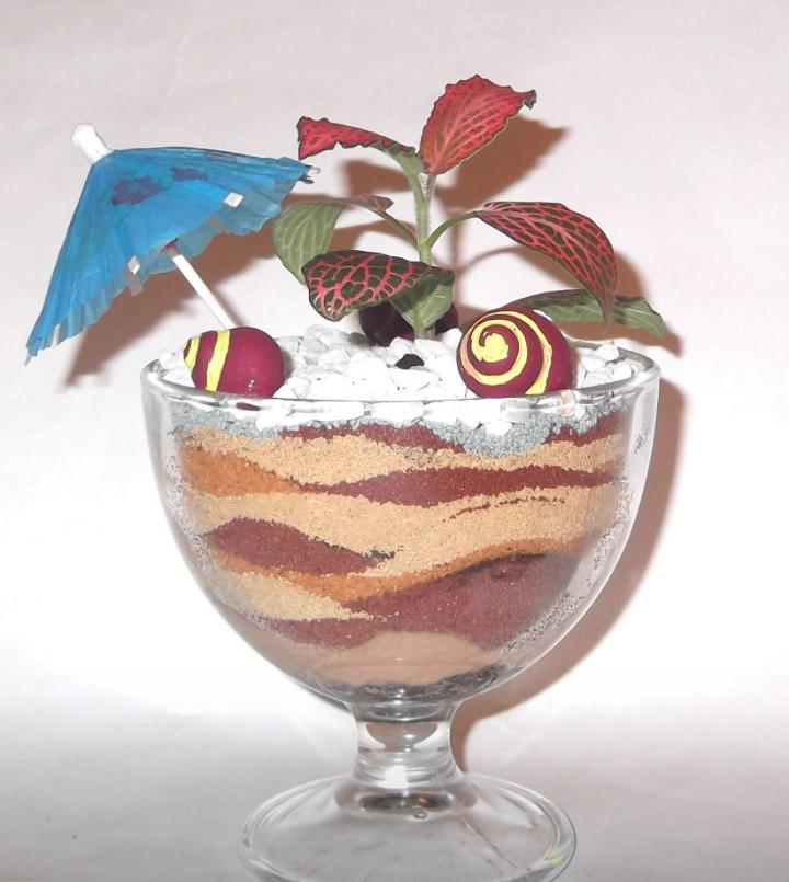 Мини-сад в креманке для мороженого