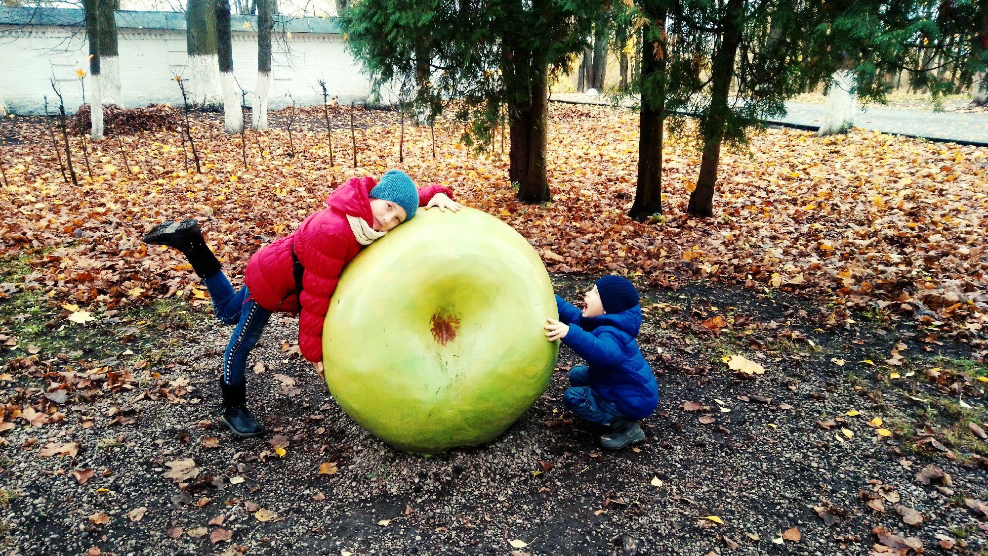 Антоновское яблочко