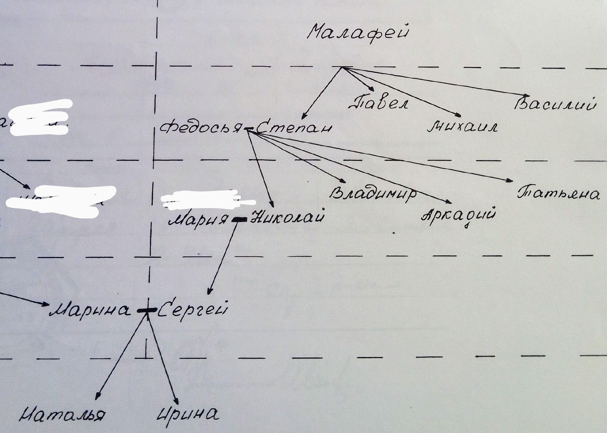 Генеалогическое древо по линии отца